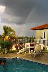 Swimming and rainbow