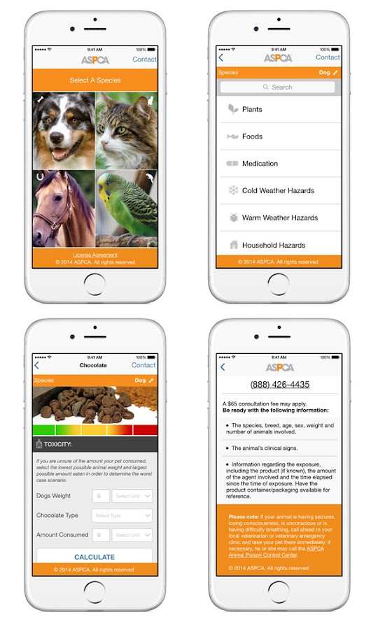 Download the New, Free ASPCA Harmful Substances App!