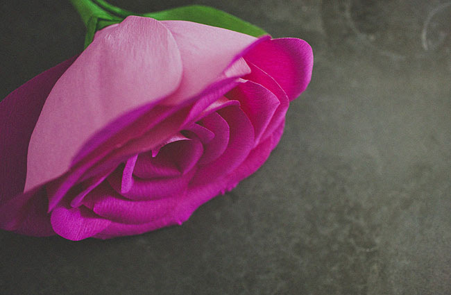 diy-gigante-papel-rosa-16