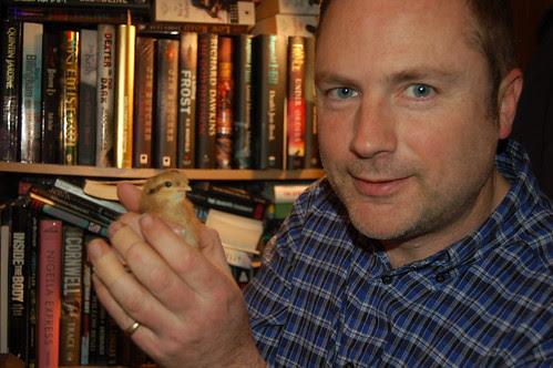 hen chick Mar 13 6