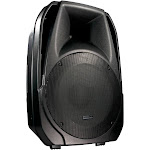 American DJ ELS15 BT 2-Way 15-Inch Active Bluetooth Speaker with MP3 Player
