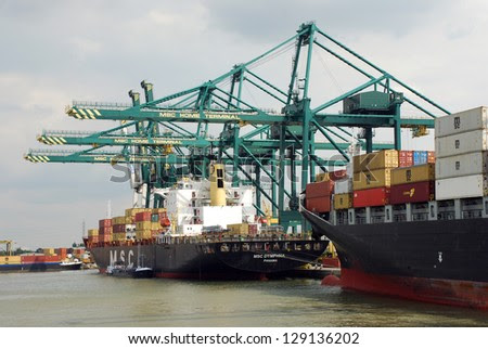 msc container terminal