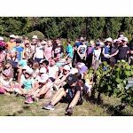 Ruffey-lès-Beaune | Ruffey-lès-Beaune : les écoliers de Meursanges ont vendangé le melon