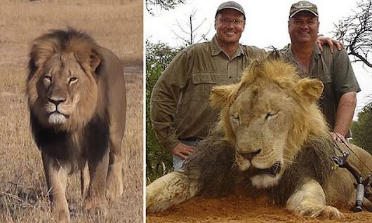 The American dentist who killed Cecil the Lion in Zimbabwe