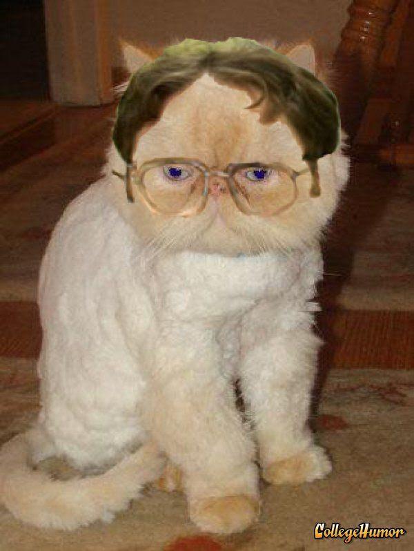 Ειμαι φαν του Χάρι Πότερ, φαινεται;