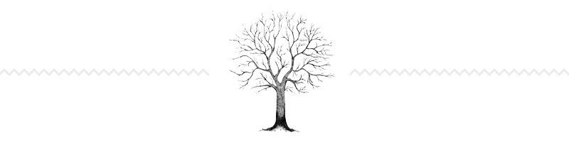 Los Mejores Sitios Para Crear Tu Arbol Genealógico Familiar De