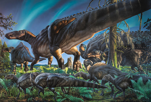 Scientists find a duck-billed dinosaur that lived in the Arctic