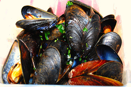 Steamed New Zealand Mussels