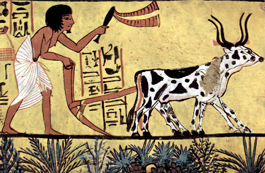 What did the ancient Egyptians eat and drink?
