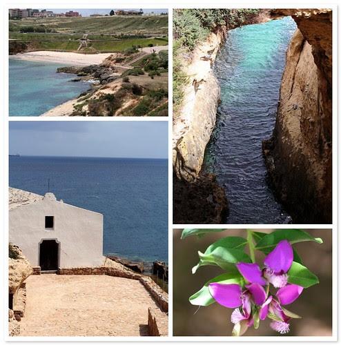 Sardegna (Porto Torres)