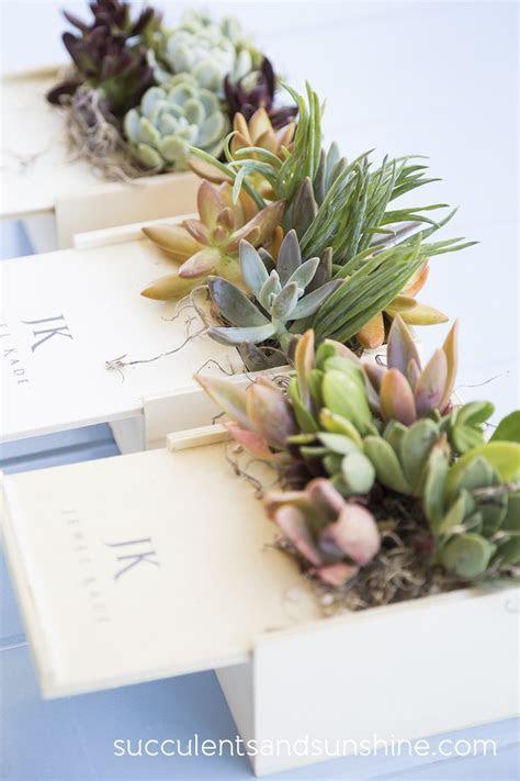 1000  ideas about Succulent Centerpieces on Pinterest