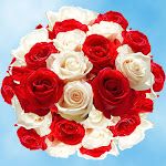 Roses Birthday Flowers 50 Roses for Birthday Bouquet by GlobalRose