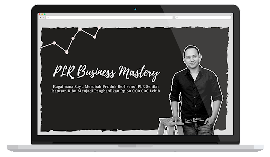 DOWNLOAD PLR Business Mastery Video Training