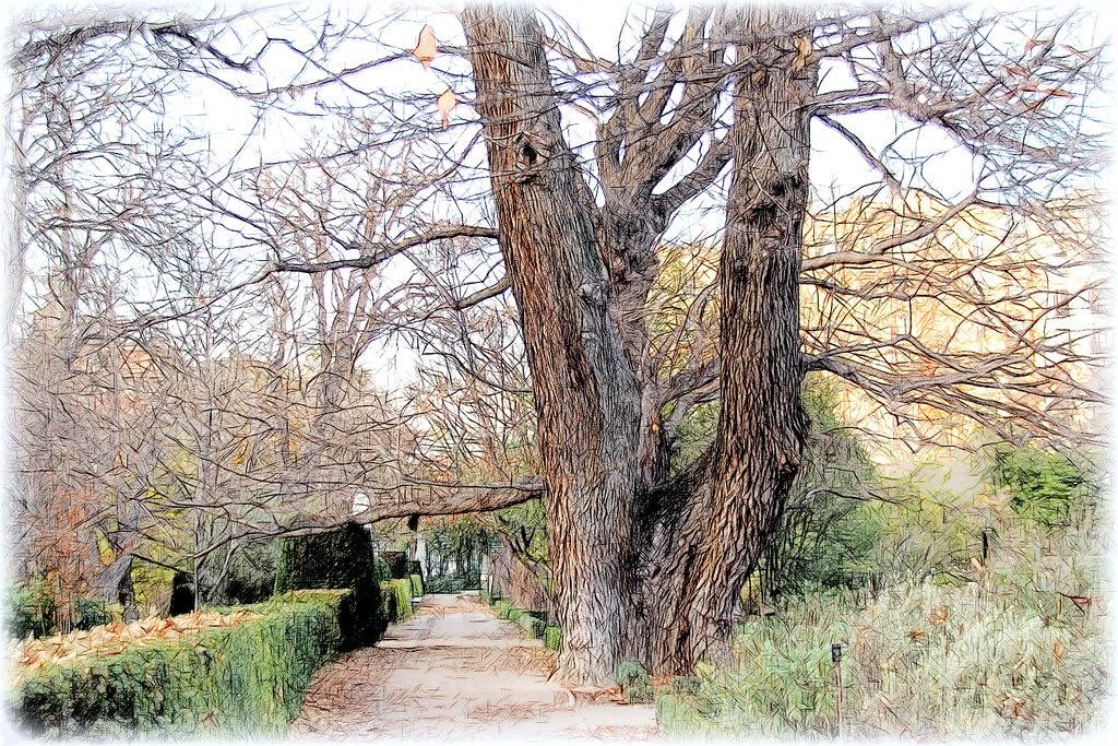 los rincones del Jardín Botánico de Madrid