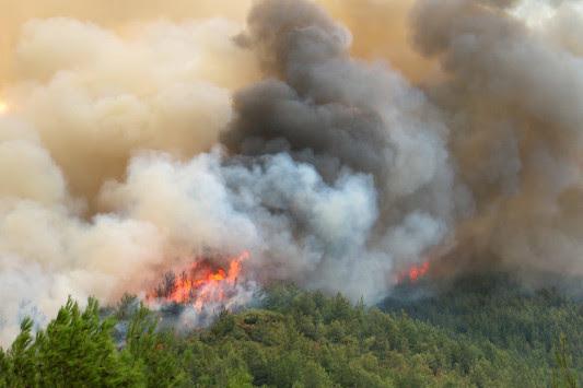 Μεγάλη φωτιά στην Αρηνή Ζαχάρως