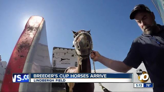 Horses arrive by plane for Breeder's Cup in Del Mar