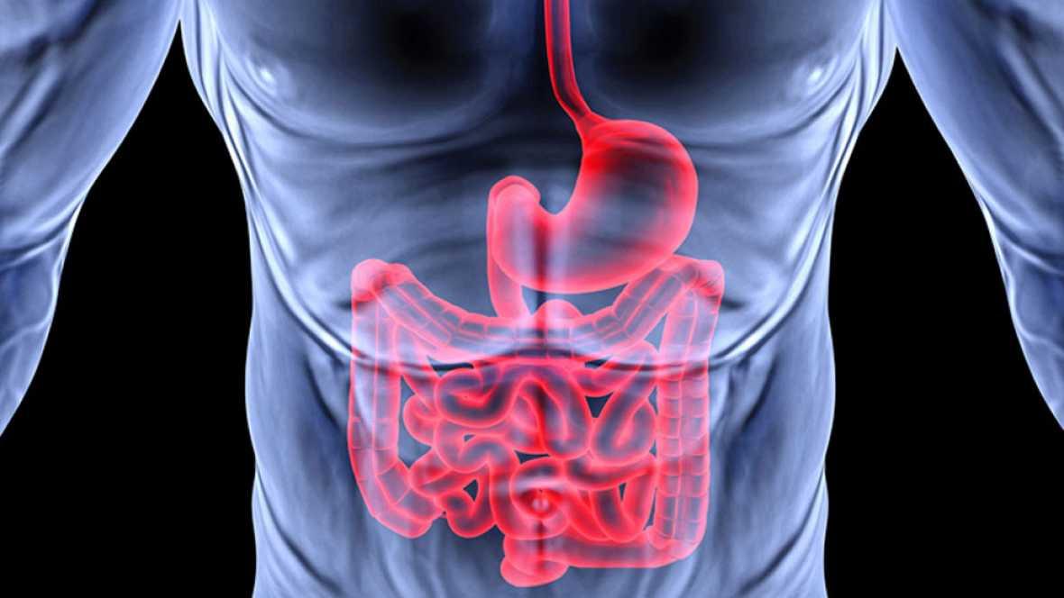 Resultado de imagen de digestión pesada