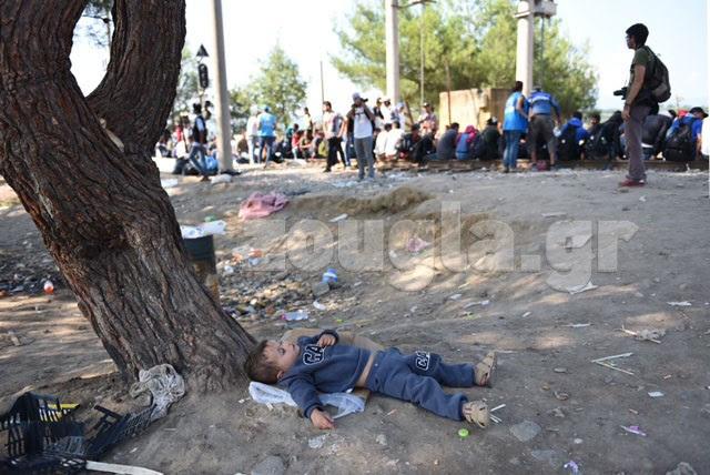 Ένα παιδί κοιμάται κάτω από ένα δέντρο...