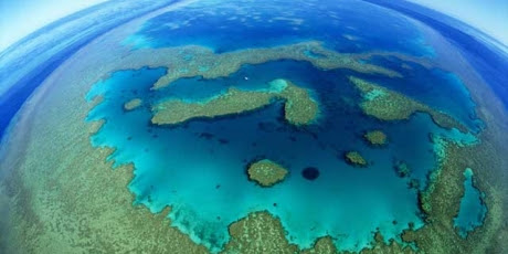 They want to dig up the Great Barrier Reef!