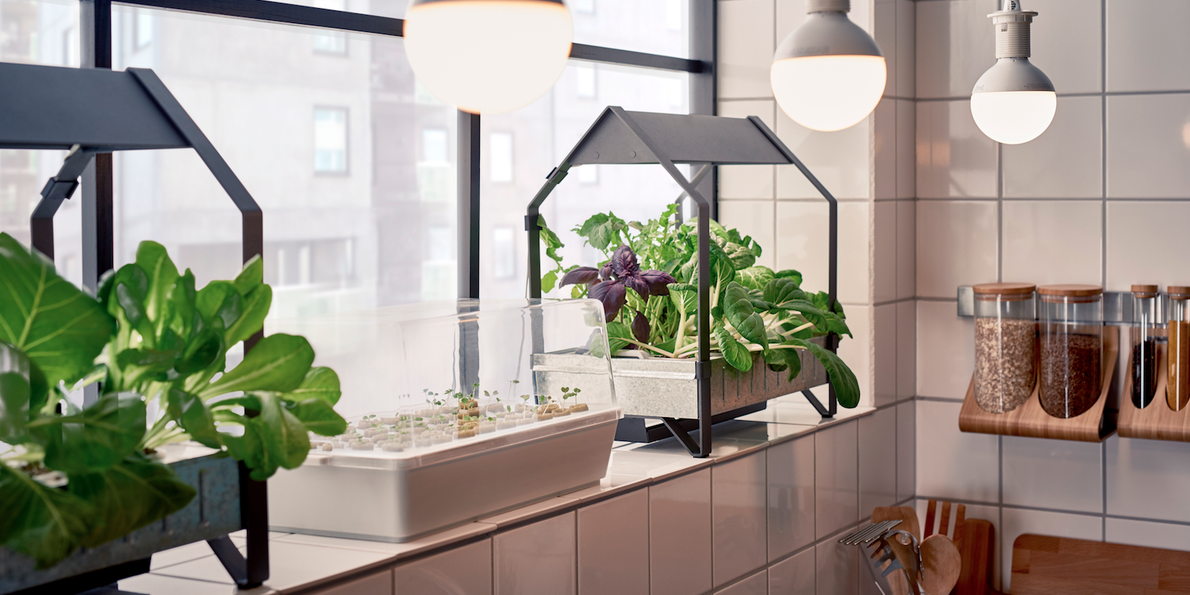 Ikea USA will release a hydroponic gardening collection ...