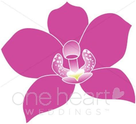 Fuschia Tropical Orchid Clipart   Wedding Orchid Clipart