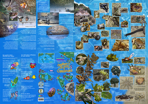 Guide to the Southern Shores of Singapore (2012 edition)