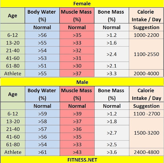 Www fitnesss net everything about muscle mass percentage with charts