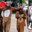 Behaving like animals: Students from prestigious London School of Economics get blind drunk at 10am in fancy dress bear costumes