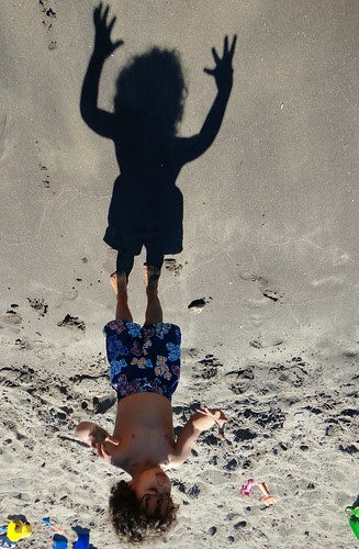 torry's shadow upside down