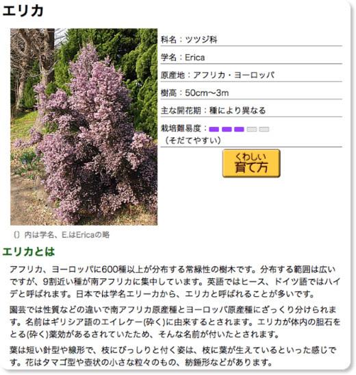http://www.yasashi.info/e_00003.htm