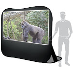 Pop-up Projection Screen (120-Inch)