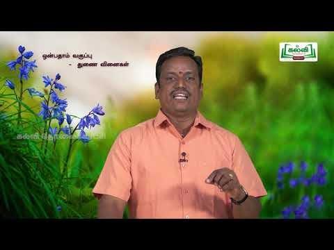 கவிதைப் பேழை Std 9 Tamil துணை வினைகள் Kalvi TV