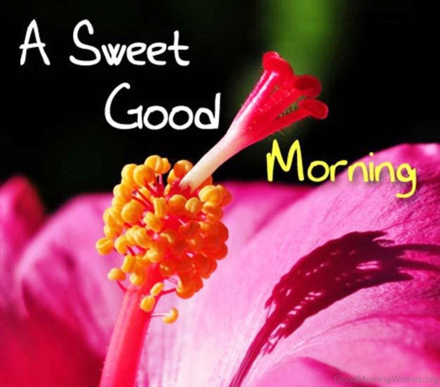 43 Sweet Good Morning Wishes