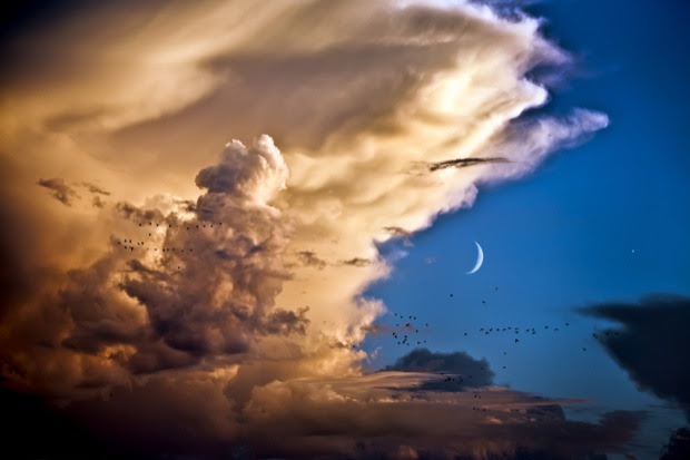 Venus clouds and the moon