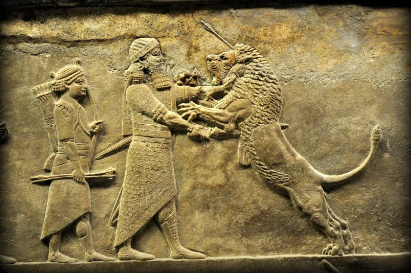 Alabaster bas-relief showing Ashurbanipal stabbing a wounded lion. This is one of the very vivid moments which speaks clearly on its behalf without any narration. The king, on foot, wearing his elegant custom and accessories, grips the lion's neck firmly with his left hand while the right hand stabs a sword rapidly and deeply into the lion's belly. The king, rigid-faced, and the lion, roaring in fear and agony, look at each other. The king's attendant holds a bow and arrows but does not seem to do anything which protects his master; it is somewhat not credible that the king exposed himself to mauling from a slightly wounded but still vigorous and aggressive lion, in the way that this sculpture, viewed in isolation, implies. From Room S of the North Palace, Nineveh (modern-day Kouyunjik, Mosul Governorate), Mesopotamia, Iraq. Circa 645-535 BCE. The British Museum, London. Photo©Osama S.M. Amin.