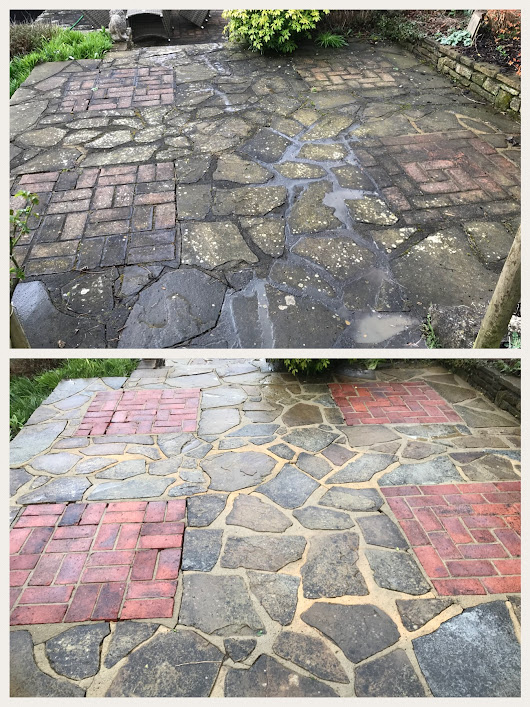Pressure Washing and Softwashing Lichen Removal | Diamond Bright Cleaning