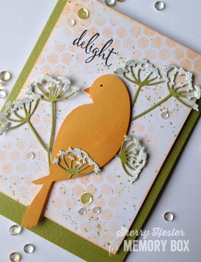 Delight with Bird - 2