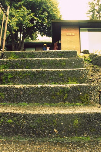 up the mossy steps. just one more climb.