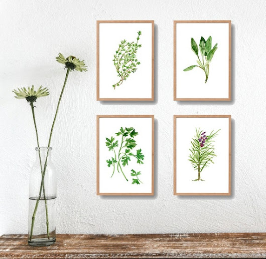 4 herbs art prints Parsley Sage Rosemary and Thyme prints