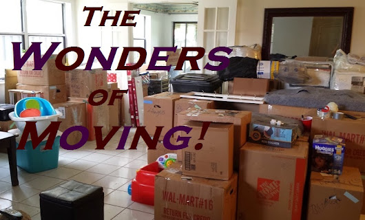 The Wonders of Moving!