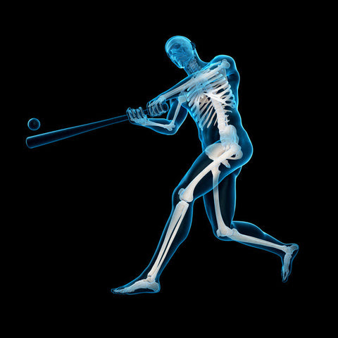 Baseball Science 101: The Physics of Hitting a Home Run