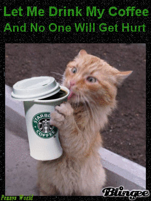 Funny Morning Coffee Quotes With Animals. QuotesGram