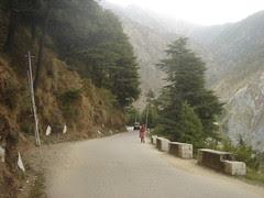 road to bhagsu