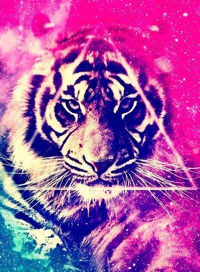 galaxy tiger  background ideas pinterest tigers