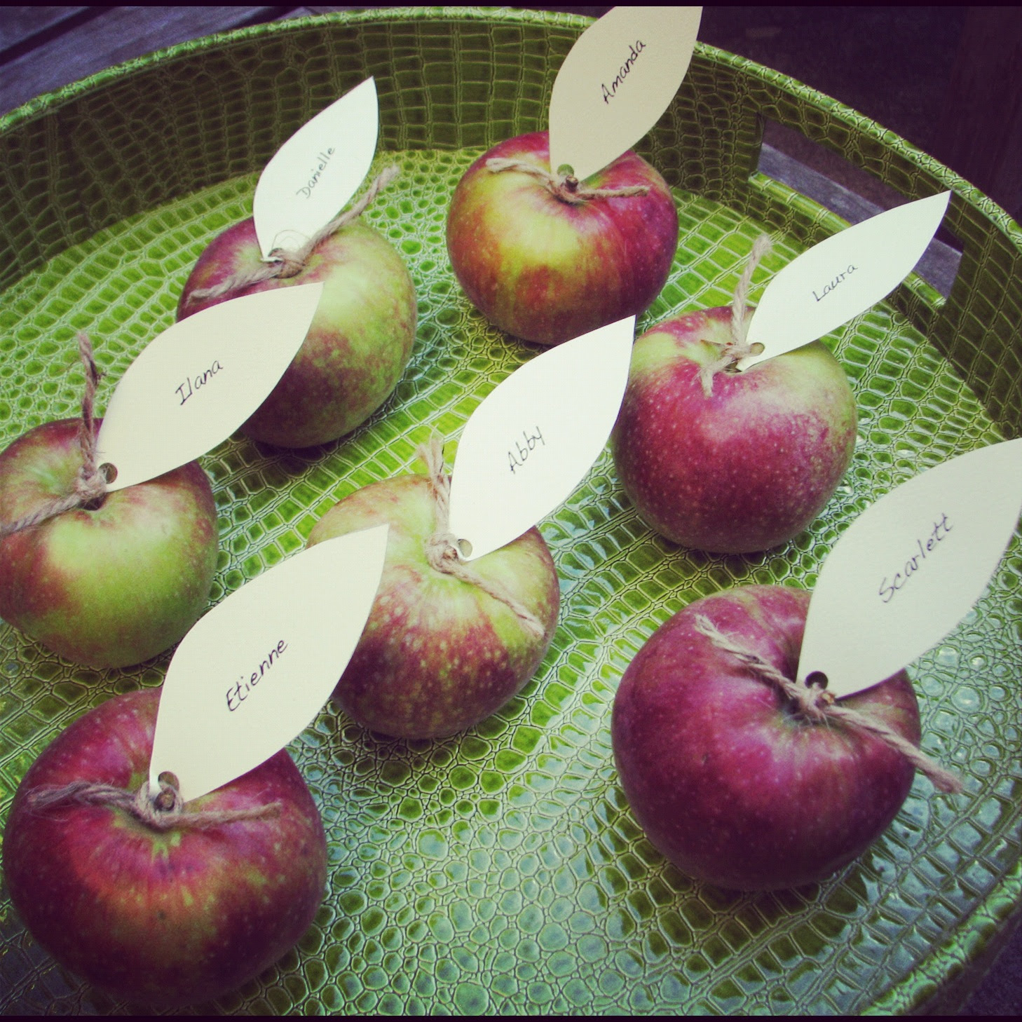 Diy Apple Place Cards Stylish Spoon