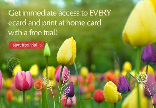 Kevin dobbie google ecards birthday ecards printable cards greeting cards american greetings m4hsunfo
