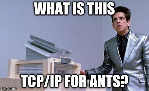 The Independent Discovery of TCP/IP, By Ants