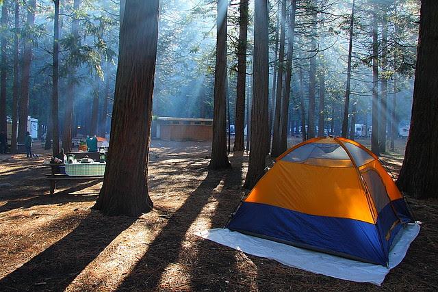 IMG_9874 Camping