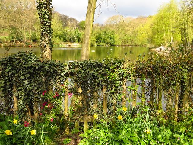 The Ladies' Bathing Pond