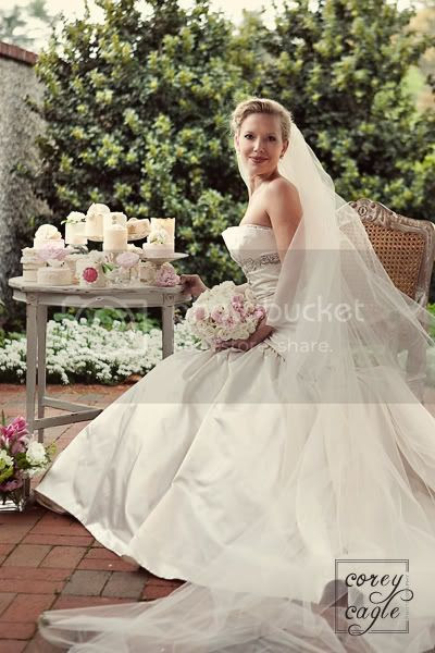 stylized bridal portrait at biltmore